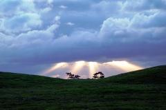 6-01 Sutton Hoo Landscape