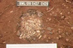 4-04 Cremated bones